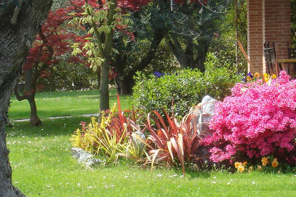 Preferenza Progettazione giardini e terrazze pensili a Padova CG89