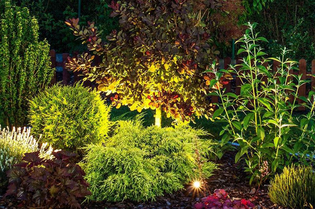 Illuminazione Da Giardino Padova : Impianto di illuminazione e irrigazione giardini padova